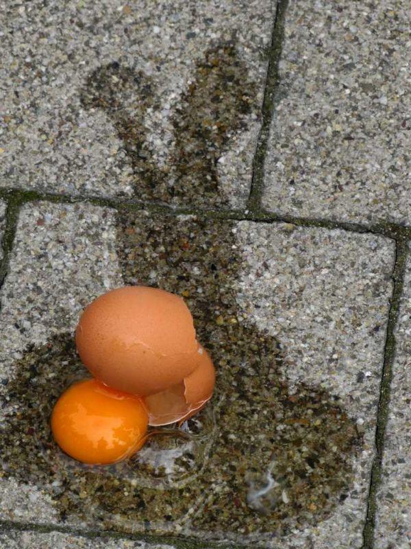 Ihre Feuerwehr Weinheim wünscht Frohe Ostern